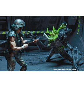 Aliens Series 12 Alien Warrior Battle Damaged/Blue Action Figure
