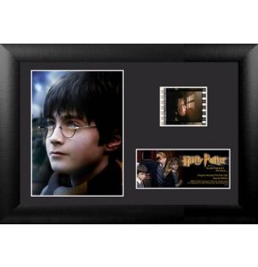 Harry Potter 1 (S6) Minicell
