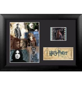 Harry Potter 7 Pt 2 (S2) Minicell