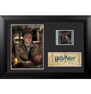 Harry Potter 7 Pt 2 (S3) Minicell