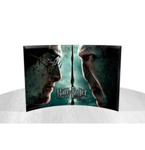 Harry & Voldemort StarFire Prints Curved Glass