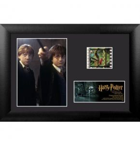 Harry Potter 2 (S6) Minicell