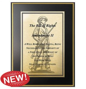 Second Amendment Right to Bear Arms Plaque